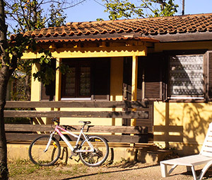 Location Bungalow camping en Provence