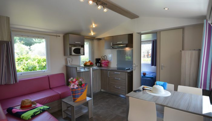 MOBIL HOME 2 CHAMBRES MODERNE