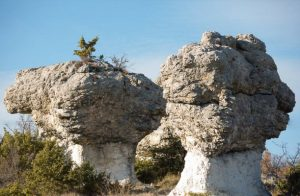 les Mourres in Forcalquier
