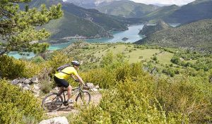 mountainbiken in de provence