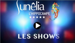 Shows, cabaret on the Sunêlia campsite in the Provence, France